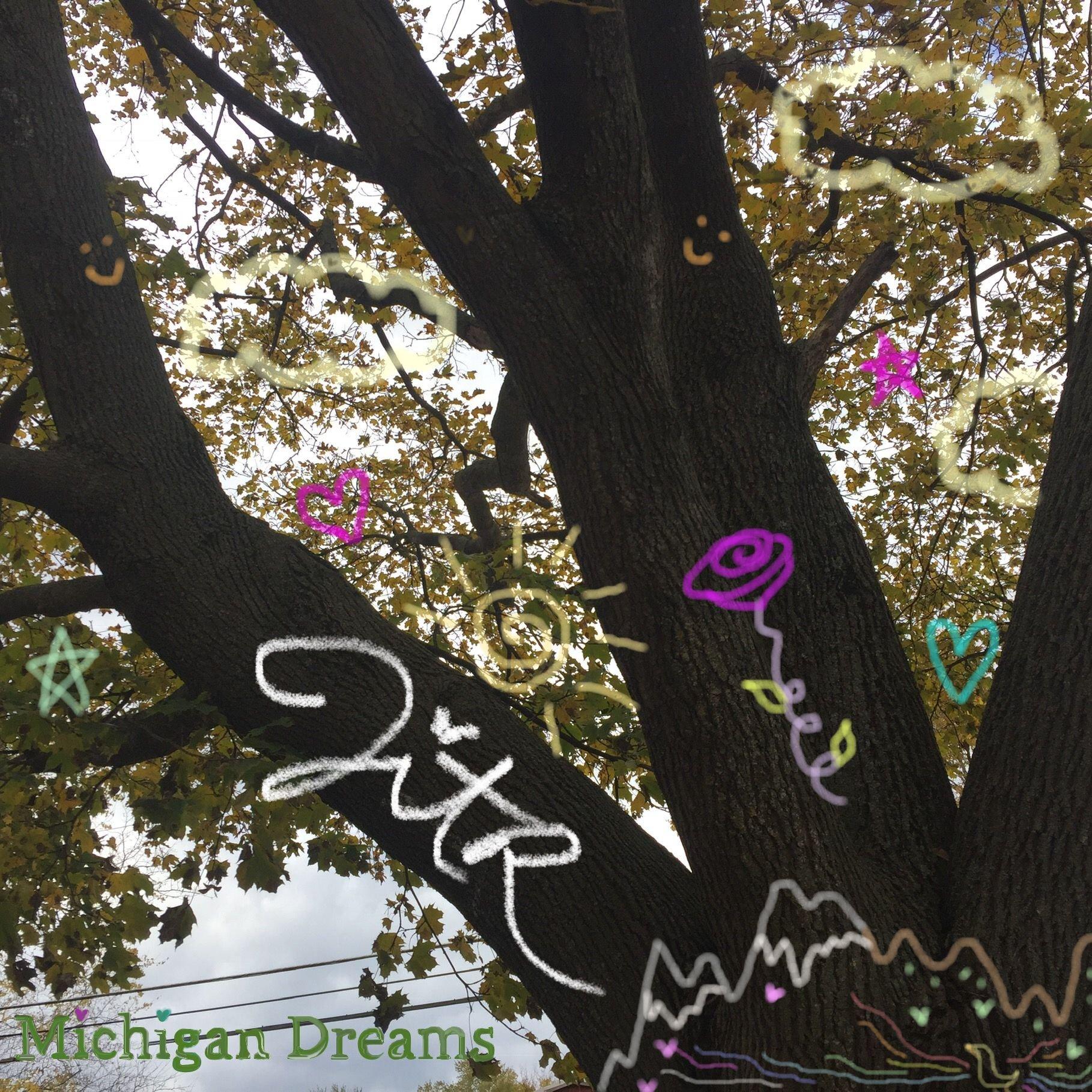 Michigan Dreams album cover w cute graffiti